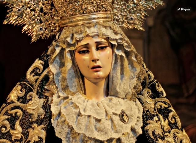 La virgen del rosario de c rdoba estar en la exposici n - Persianas lavirgen cordoba ...